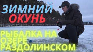Январь Рыбалка на озере Раздолинском Зимний окунь Fishing on Razdolinskoe Lake Winter perch