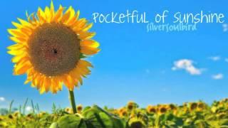 Natasha Bedingfield - Pocketful of Sunshine ~soulbird Acoustic cover~