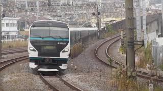 E257系特急踊り子15号伊豆急下田行戸塚駅高速通過