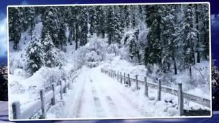 Wolf Kati, Szekeres Adrien, Roy, Ply Barna- Karácsonyi álom