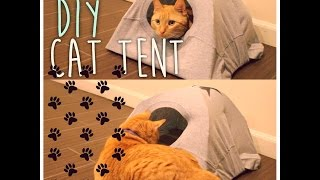 DIY Cat Tent | ArtsyPaints