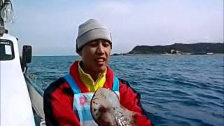海隆號海釣船 卡通人物變態小隊 花枝、軟絲、小卷、魷魚  亂搞班 2015 02 11