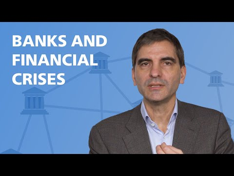 flashMOOCs: Banks and Financial Crises explained