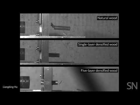 Superdense wood slows a bullet | Science News