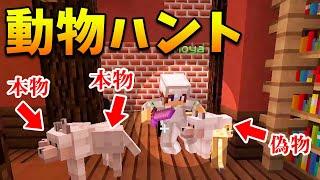 【マインクラフト】動物ハントのハンターチームが強すぎる!!!