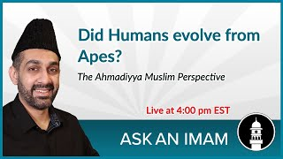 Did Humans evolve from Apes? | Ask an Imam