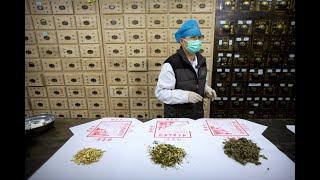 时事大家谈:诋毁中医药将处罚追责 北京有何盘算?