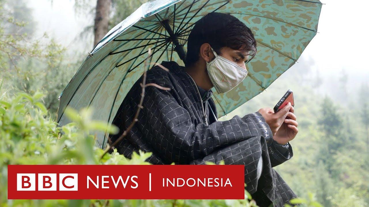 Covid-19 di India: Anak-anak yang harus mendaki gunung demi koneksi internet - BBC News Indonesia