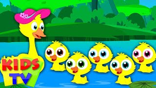 Five Little Ducks | Nursery Rhymes | Kids tv Songs | little duck song | five ducks song by kids tv