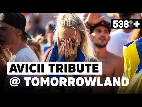 Daniël beleeft eerbetoon Avicii op Tomorrowland | 538Plus