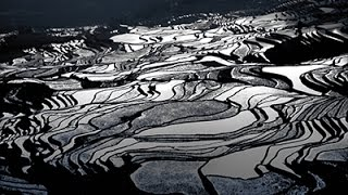 JANWAWA :: Kunming 昆明(中国)คุนหมิง (Part I)