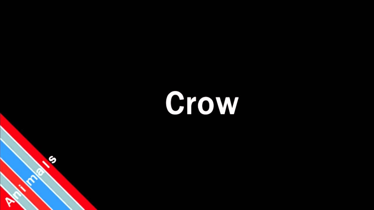 How to Pronounce Crow