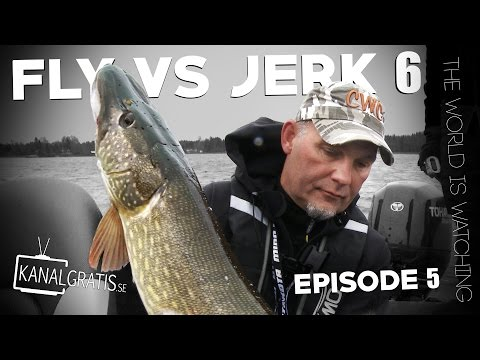 Fly vs Jerk 6 - EPISODE 5 - The World is Watching