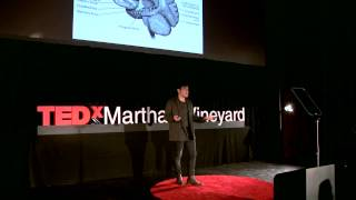Auteurs in the ether | Alan Palomo | TEDxMarthasVineyard