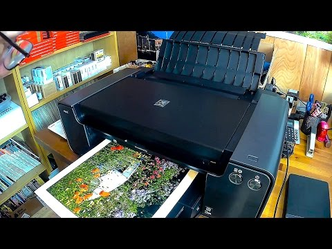 The CANON PIXMA PRO 1 Printing a 13x19 from Qimage Ultimate