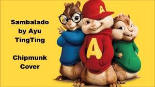 Video Chipmunk Cover - Ayu Ting Ting Sambalado download MP3, 3GP, MP4, WEBM, AVI, FLV Oktober 2017