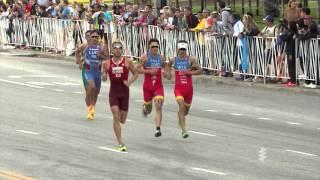 2015 ITU World Triathlon Chicago - Elite Men