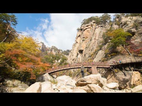 단풍 절정 설악산 주전골 트레킹(Seorak trekking peak foliage)