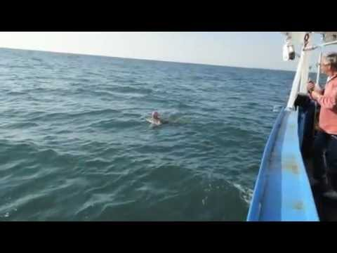 Becky Lewis' 5th English Channel Swim