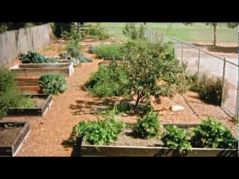 Meiners Oaks Garden Club - Food for Thought Ojai