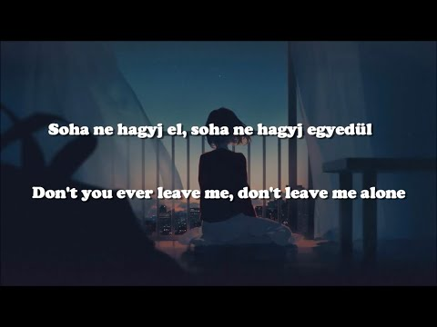 David Guetta ft. Anne-Marie - Don't Leave Me Alone /Magyar/