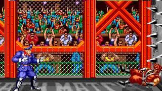 Mega Drive Longplay [311] World Heroes