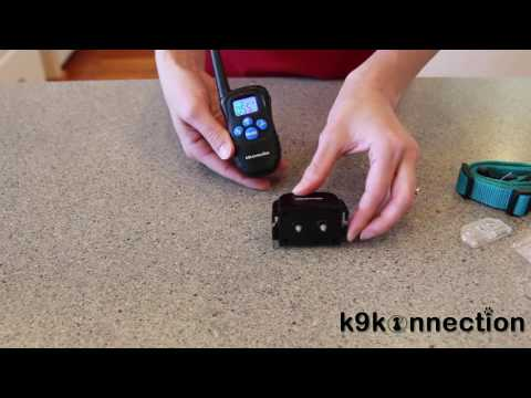 GUIDE: How to Setup Your K9konnection Training Collar