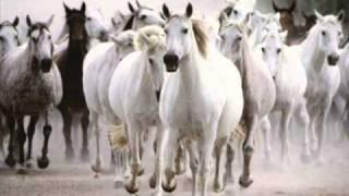 Nasko Mentata - Sedem Beli Konq
