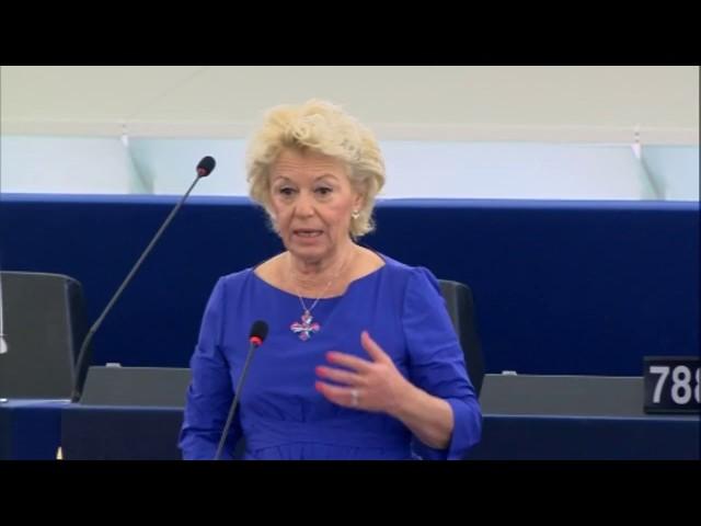 Marie-Christine Arnautu sur l'affaire Volkwagen