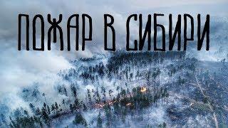 Пожары в красноярском крае, пожар в Сибири 2019 Сибирь горит регрессивный гипноз ченнелинг