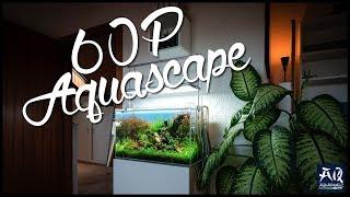 AQUASCAPING IM 60P WEISSGLASBECKEN | mein größtes Aquarium vorgestellt | AquaOwner