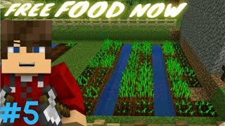 I STARTED FARMING NEAR MY HOUSE | ROBY DIED | Minecraft Gameplay #5