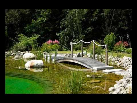BioNova® Natural Pools - Podcast