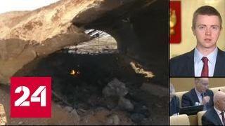В Госдуме осудили удары США по Сирии