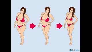 не могу похудеть вес стоит на месте что делать