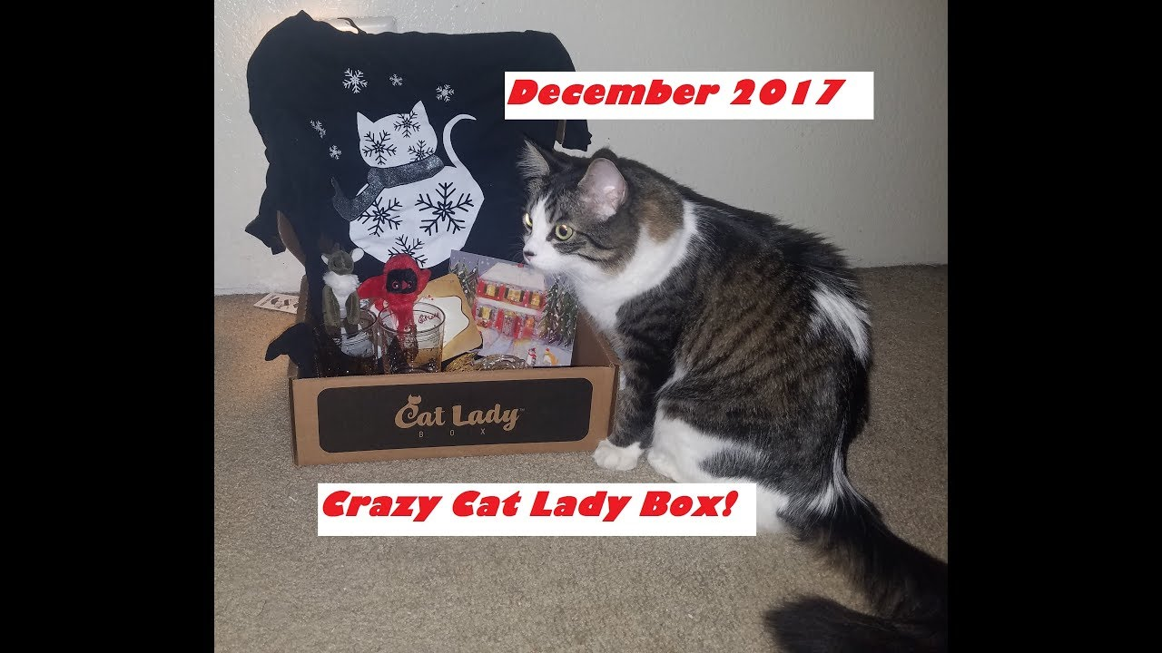 Youtube Crazy Cat Lady Box