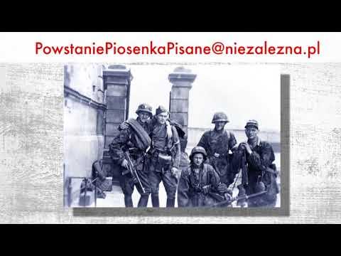 Specjalna akcja portalu niezależna.pl
