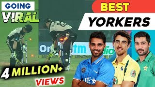 Top 10 Best Yorkers In Cricket Ever 2018 | Destructive Yorkers | AG Flex HD