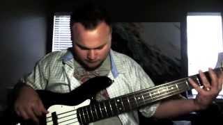 D'Addario XL Chromes: five-string flatwound bass strings