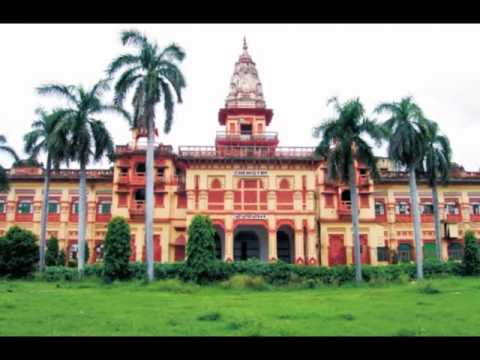 A life in bhu