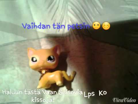 Littlest Pet Shop Seisova Kissa