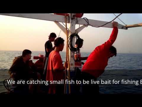 Fishing MArlin @Merak Jakarta