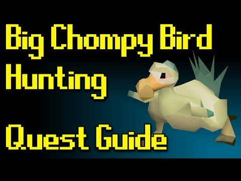 RSQuest: Big Chompy Bird Hunting Quest Guide [Runescape 3 | RS3]