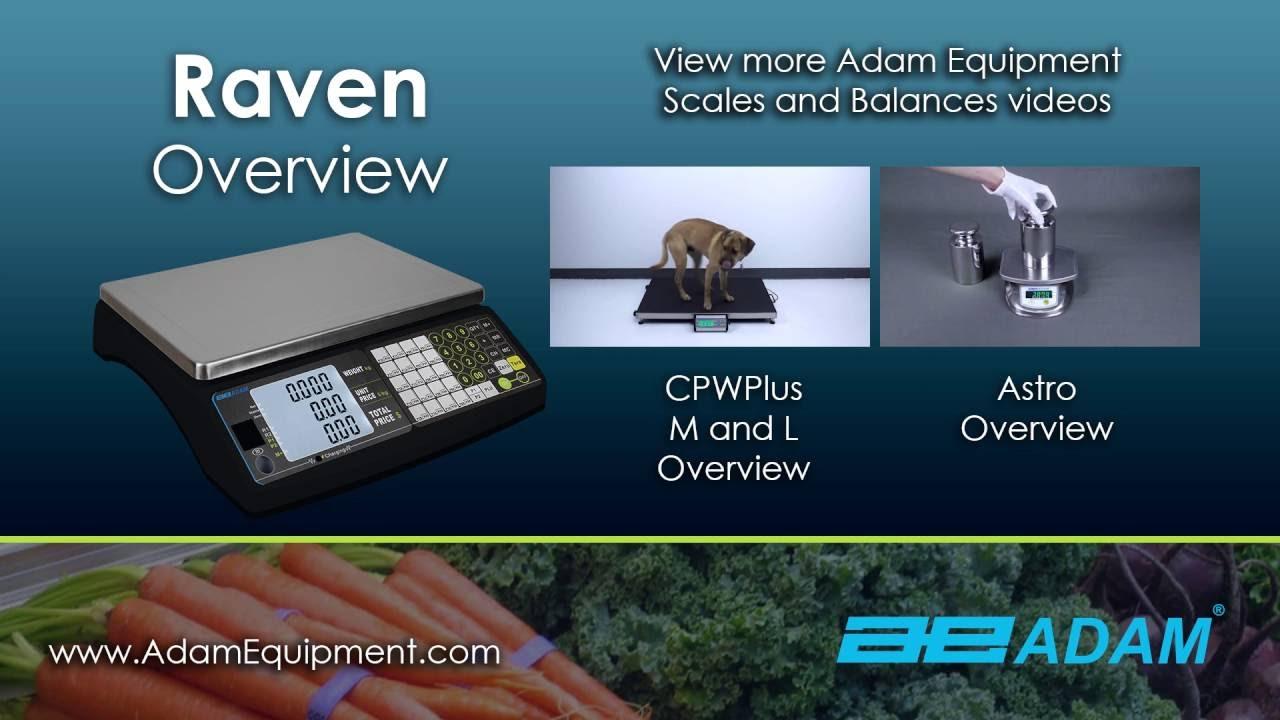 0.02lb Readability 60lb Capacity x 0.01lb Adam Equipment RAV 60Da Raven Price Computing Retail Scale 30lb