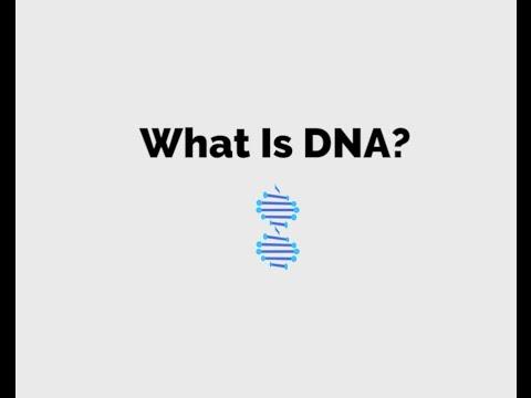 Fantastic DNA! extraction steps