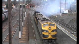 Australian Trains: El Zorro grain on the Bendigo line. 30-06-2012.