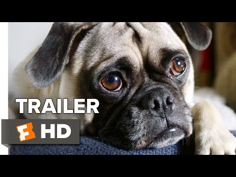 Dog Days Teaser Trailer #1 (2018) | Movieclips Indie