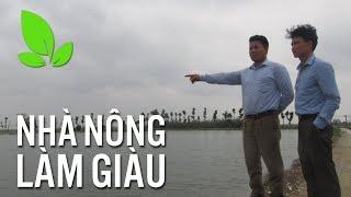 'Choáng' với trang trại nuôi cá theo công nghệ Thái Lan, thu 1 tỷ đồng/năm  | VTC16