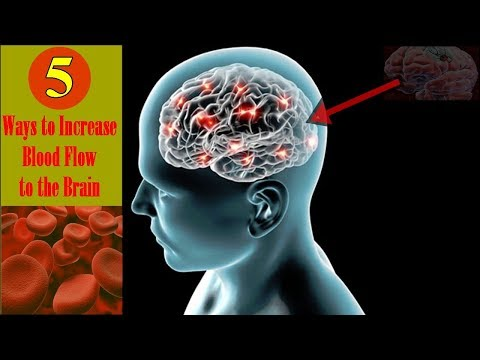 5-ways-to-increase-blood-flow-to-the-brain