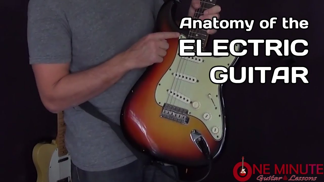 Anatomy of the Electric Guitar - 1 Minute Lesson - YouTube